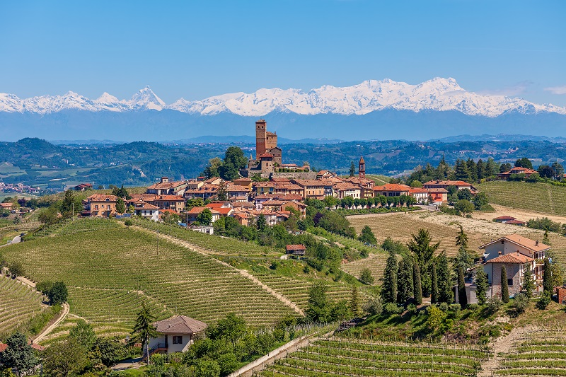 Small town on a hill surrounded by green vineyards and mountains with snowy peaks in background in Piedmont