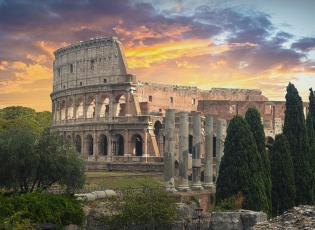 the colosseum at dusk with cyprus trees